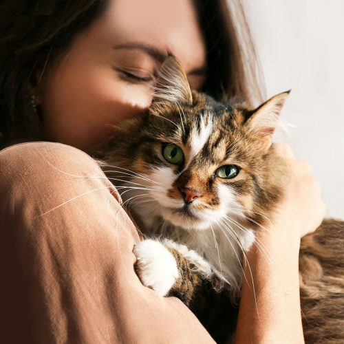 A woman hugging her tabby cat, before an-home euthanasia with Time2SayGoodbye.