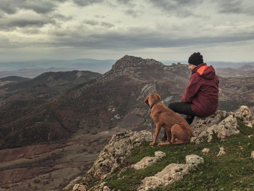 Man on a mountain peak with his old dog, considering pet euthanasia withTime2SayGoodbye.
